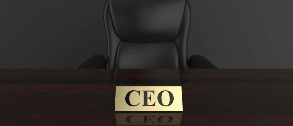 Портрет российского CEO