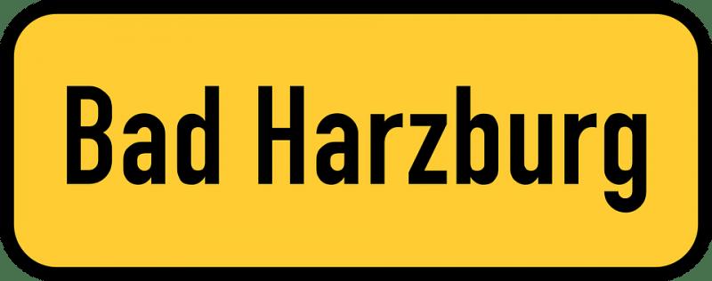 Гарцбургская модель руководства