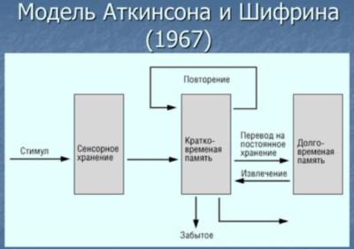 Система переработки информации и ее связь с принятием решений
