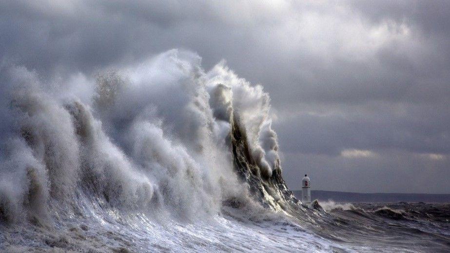 Унесённые кризисным ветром