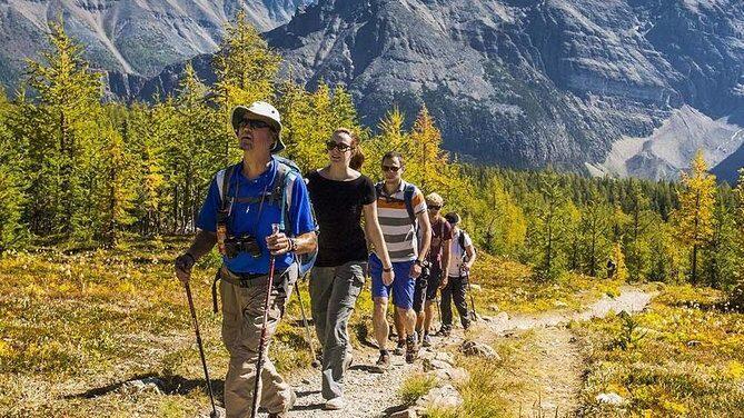 Исполнение гибких бюджетов и разработка прогнозного баланса на примере туристической организации