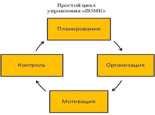 Vosmerka4