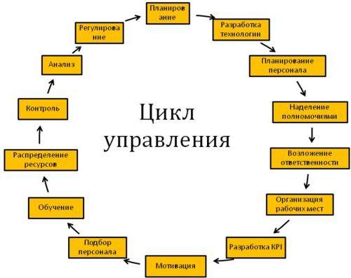 Vosmerka6