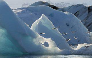 10 айсбергов, которые топят ваш проект