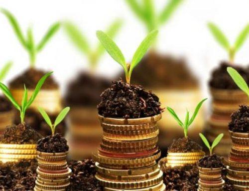 Как составить бюджет на месяц и год: руководство с примерами