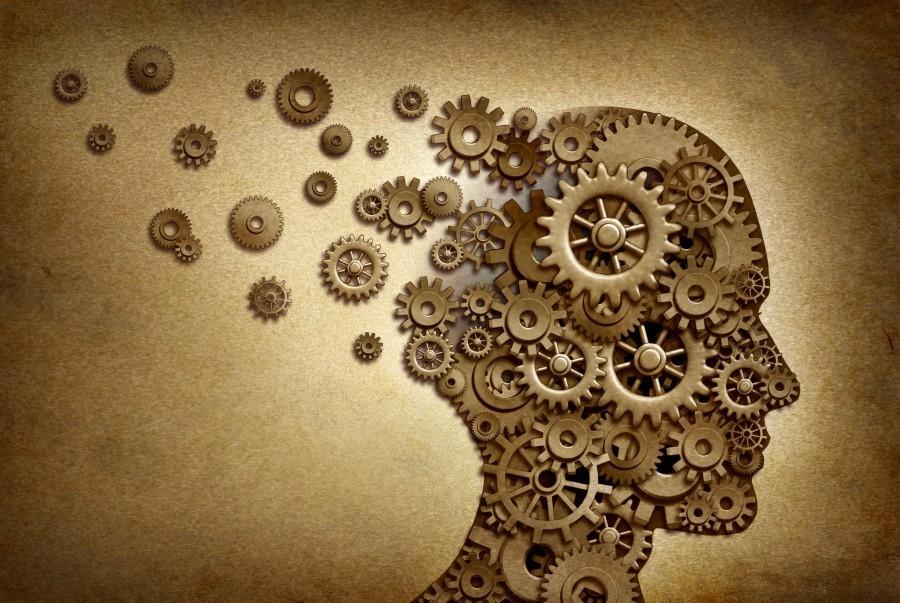 Поняв, как работает мозг, вы достучитесь до любого